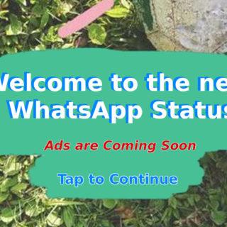 WhatsApp-Status-ads
