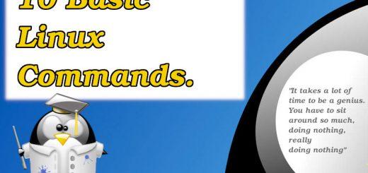 10 Basic Linux Commands